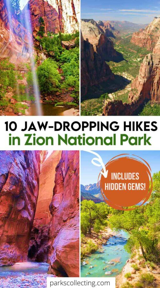 10 Jaw Dropping Hikes in Zion National Park