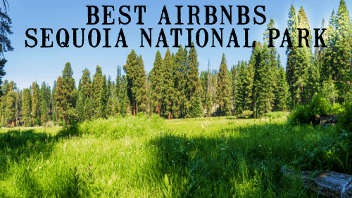 Best Airbnbs Sequoia National Park