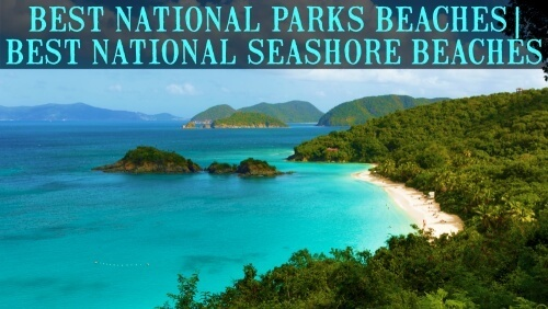 Best Beaches in US National Parks