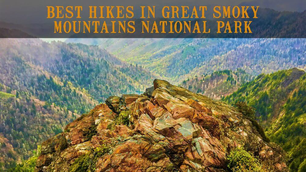 Best Hikes in Great Smoky Mountains National Park