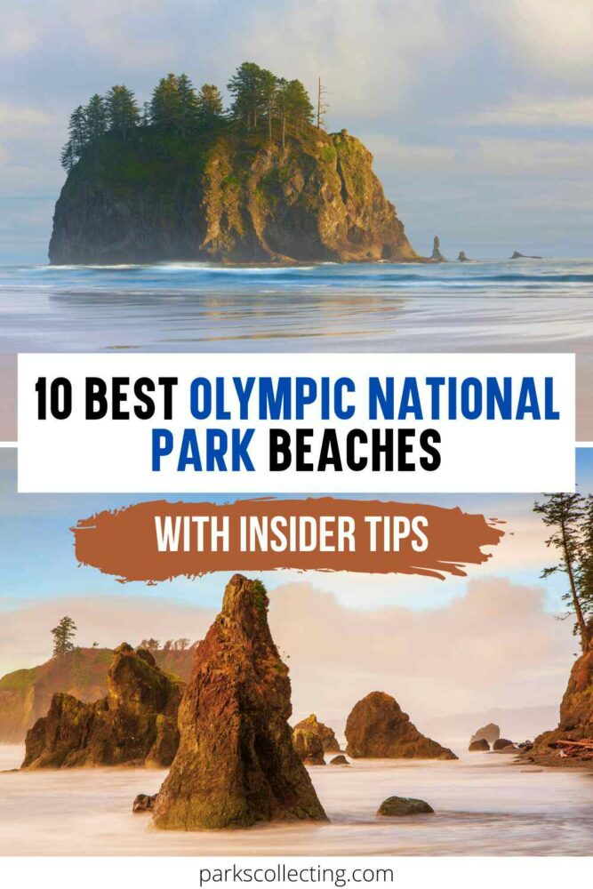 Best Olympic National Park Beaches_ With Insider Tips