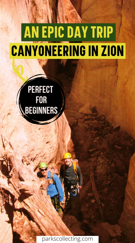 Epic Day Trip Canyoneering in Zion National Park
