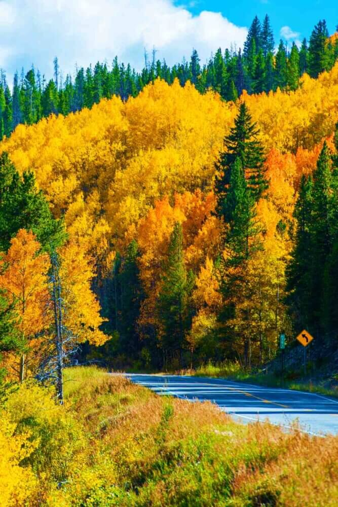Fall color rocky mountains