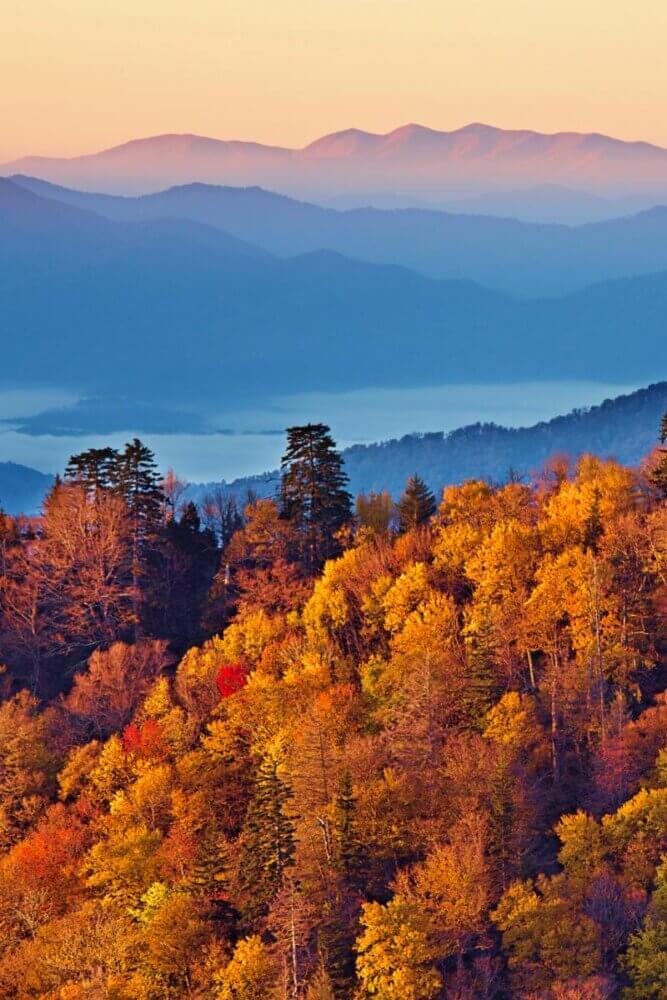 Great Smoky Mountains National Park in the fall
