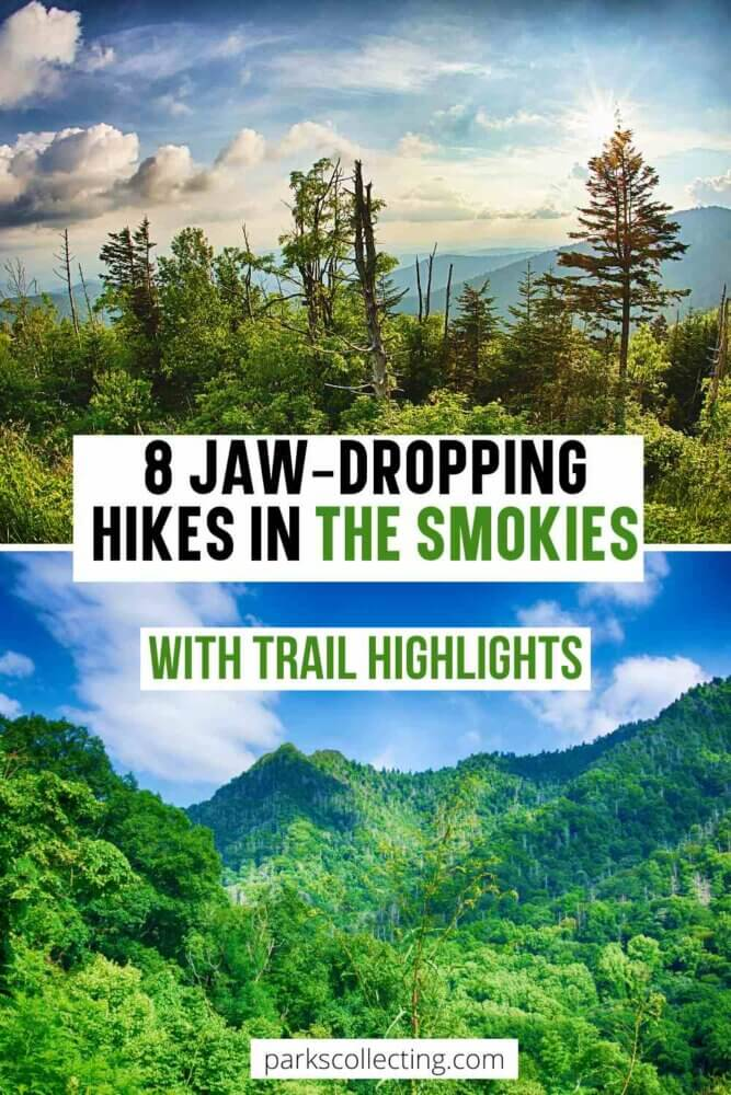 Jaw-dropping hikes in Great Smoky Mountains National Park