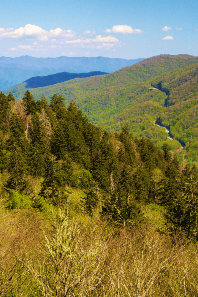 Newfound Gap Scenic Drive Great Smoky Mountains National Park