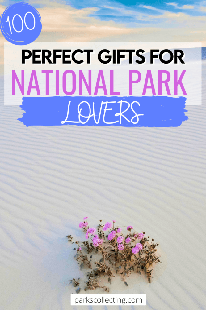 Perfect Gifts For National Parks Lovers