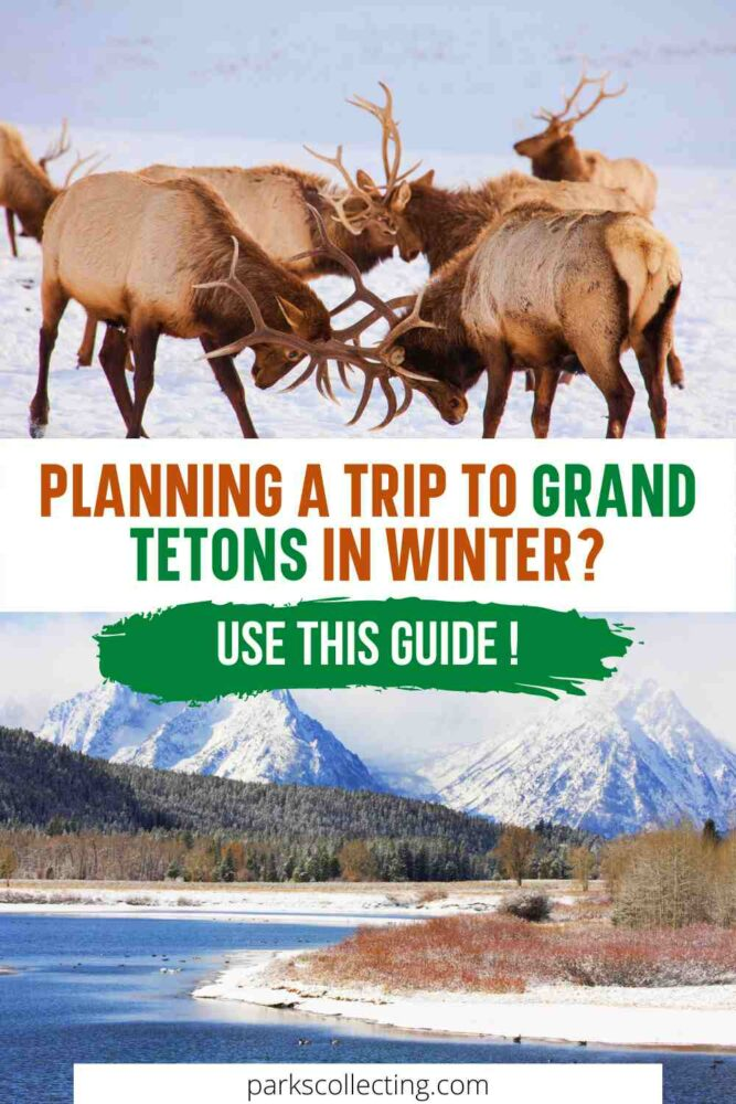 Planning a Trip to Grand Tetons in Winter_ Use This Guide