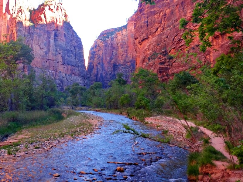 Riverside Walk one of the best hikes in Zion National Park