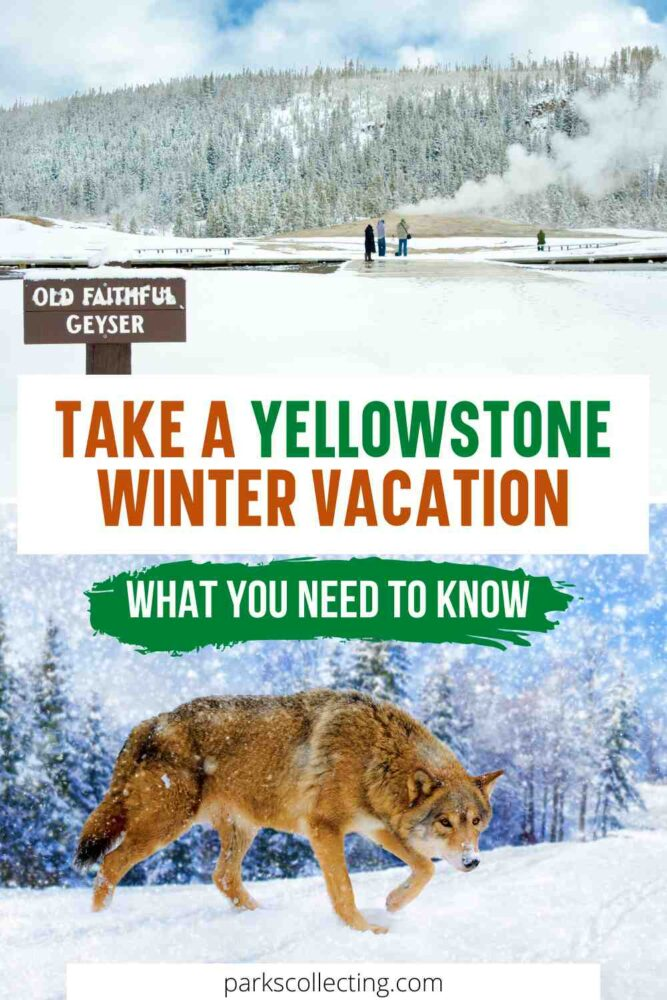 Take a Yellowstone Winter Vacation_ What You Need to Know