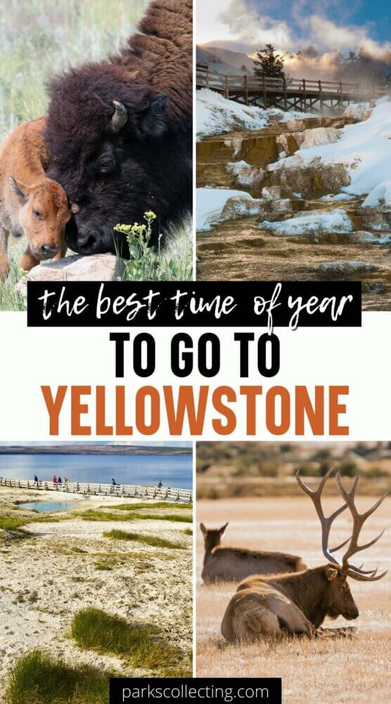 The Best Time of Year to Go to Yellowstone