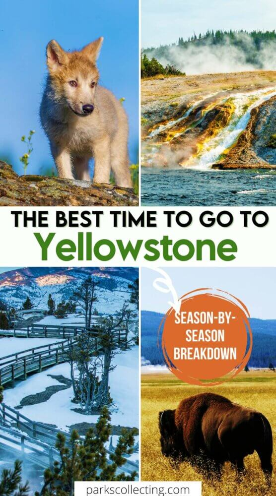 The Best Time to Go to Yellowstone