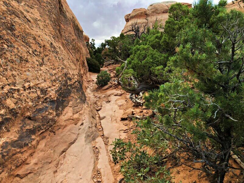 Trail-to-Partition-Arch-Devils-Garden-TRail-Arches-National-Park