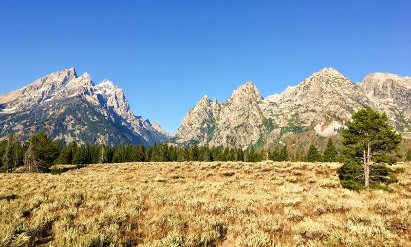 View-of-Grand-Tetons-from-Cascade-Canyon-Turnout