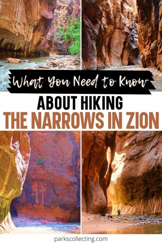 What You Need to Know About HIking The Narrows in Zion